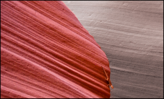Lower Antelope Canyon, Page - Arizona - USA