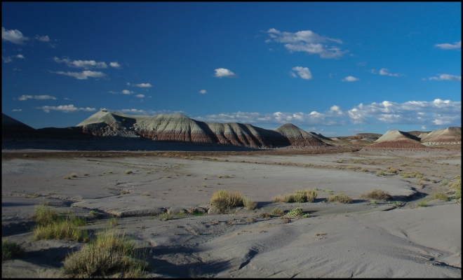Petrified Forest and Painted Desert National Park, Arizona - USA