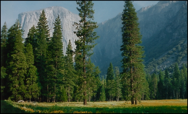 Yosemite National Park, California - USA